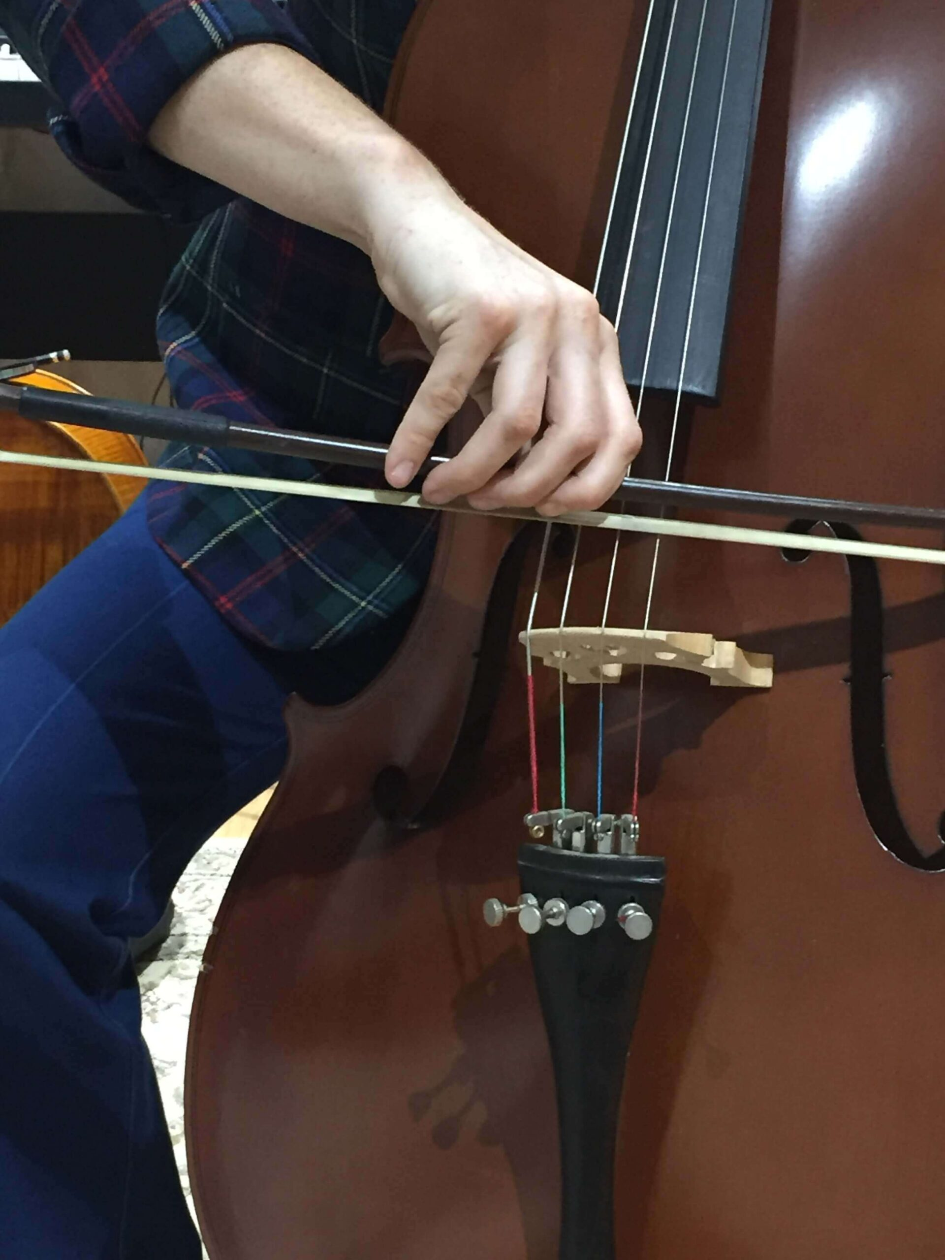 Cello Courses For Adults